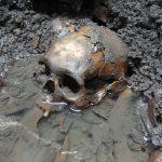 Во Франции найдены три сотни скелетов